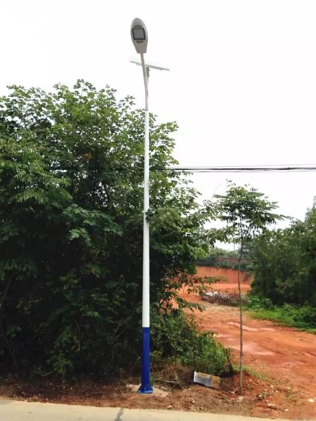 西安陈家村6米30W太阳能路灯案例